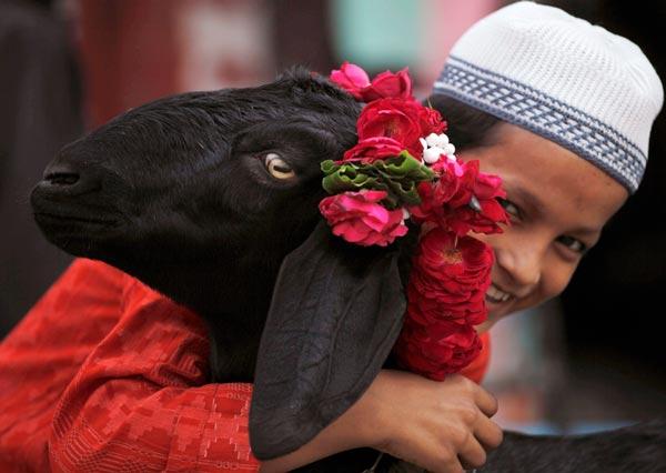 sunnah-eid-ul-adha